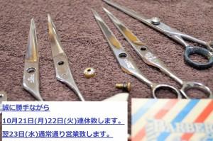 DSC_0307 (3)